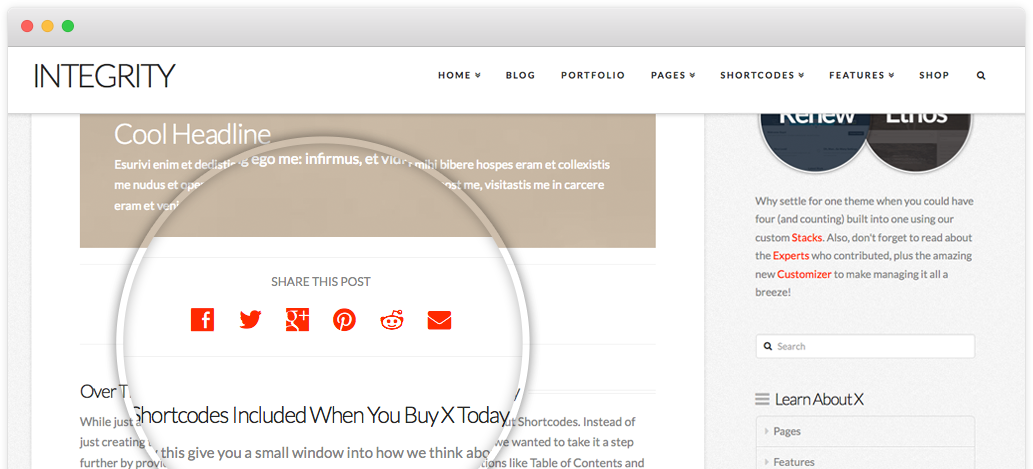 screenshot of custom social sharing option in X theme