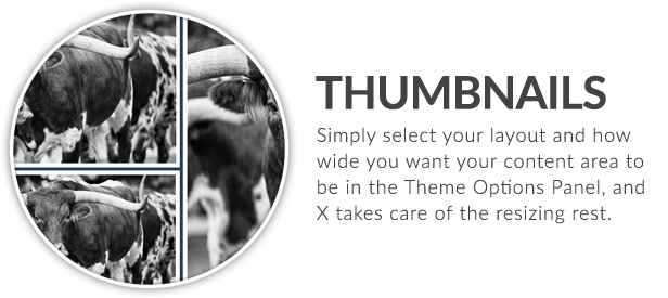 X | The Theme - 39